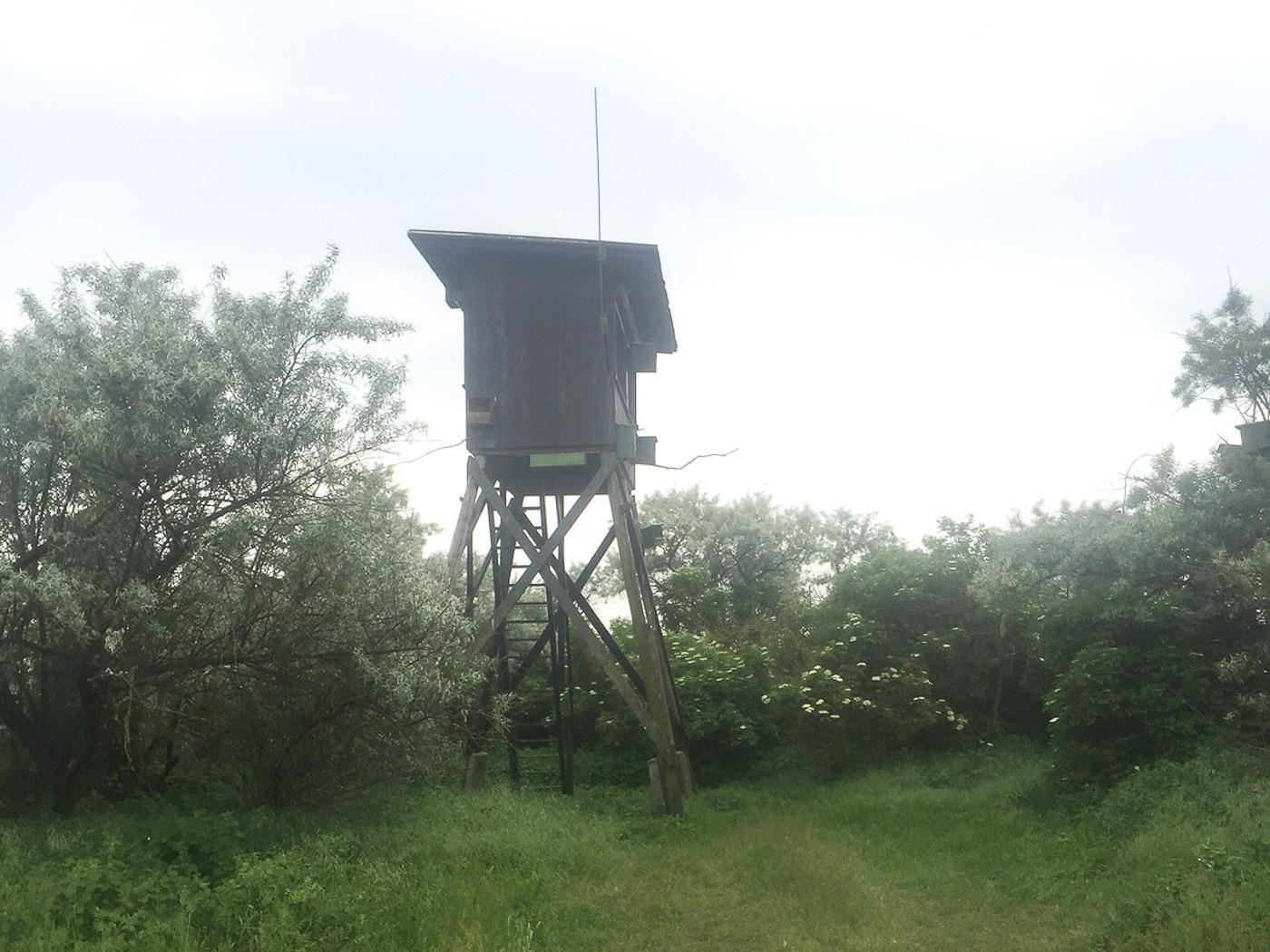Schuilhut bij de kolonie Roodpootvalken